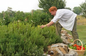 Chef in the garden - Summer in the Shenandoah Valley