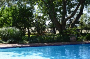 Refreshing swimming pool in our French bed and breakfast in Virginia