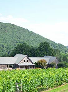 Virginia Wine Tours - Wineries in Wine Country a Vineyard