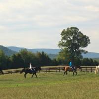 Horseback riding at L'Auberge Provencale