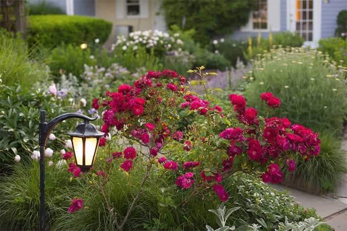 Romantic Getaways in Virginia - Flowers