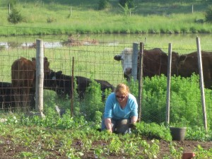 Farm fresh food at Virginia bed and breakfast