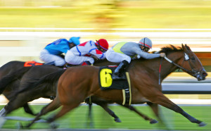 Enjoy a Virginia horse race near our romantic VA bed and breakfast.