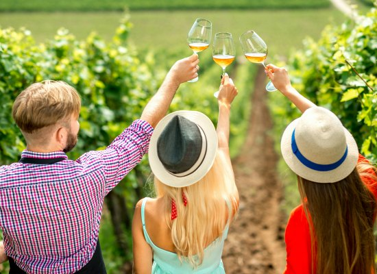 great Virginia wine festivals