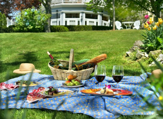Picnic spread on our lawn