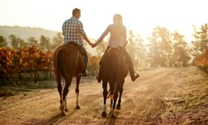 A couple horseback ride in the sun on a dirt road