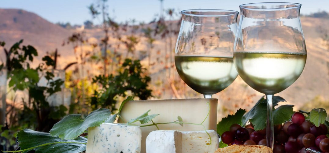 Wine and cheese at a winery