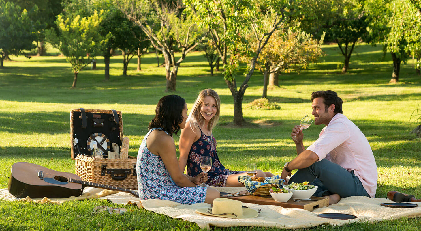 Guests enjoying a picnic outdoors