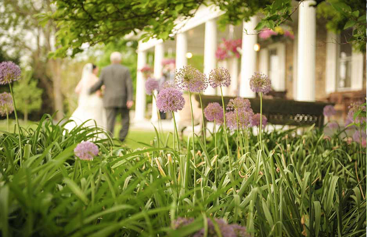 Fater and bride walking with purple flowers in the foreground