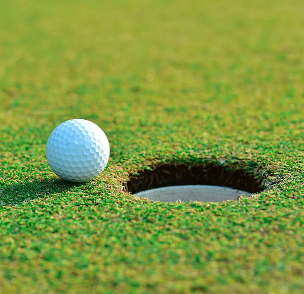 Things to do in Northern Virginia - Golfing