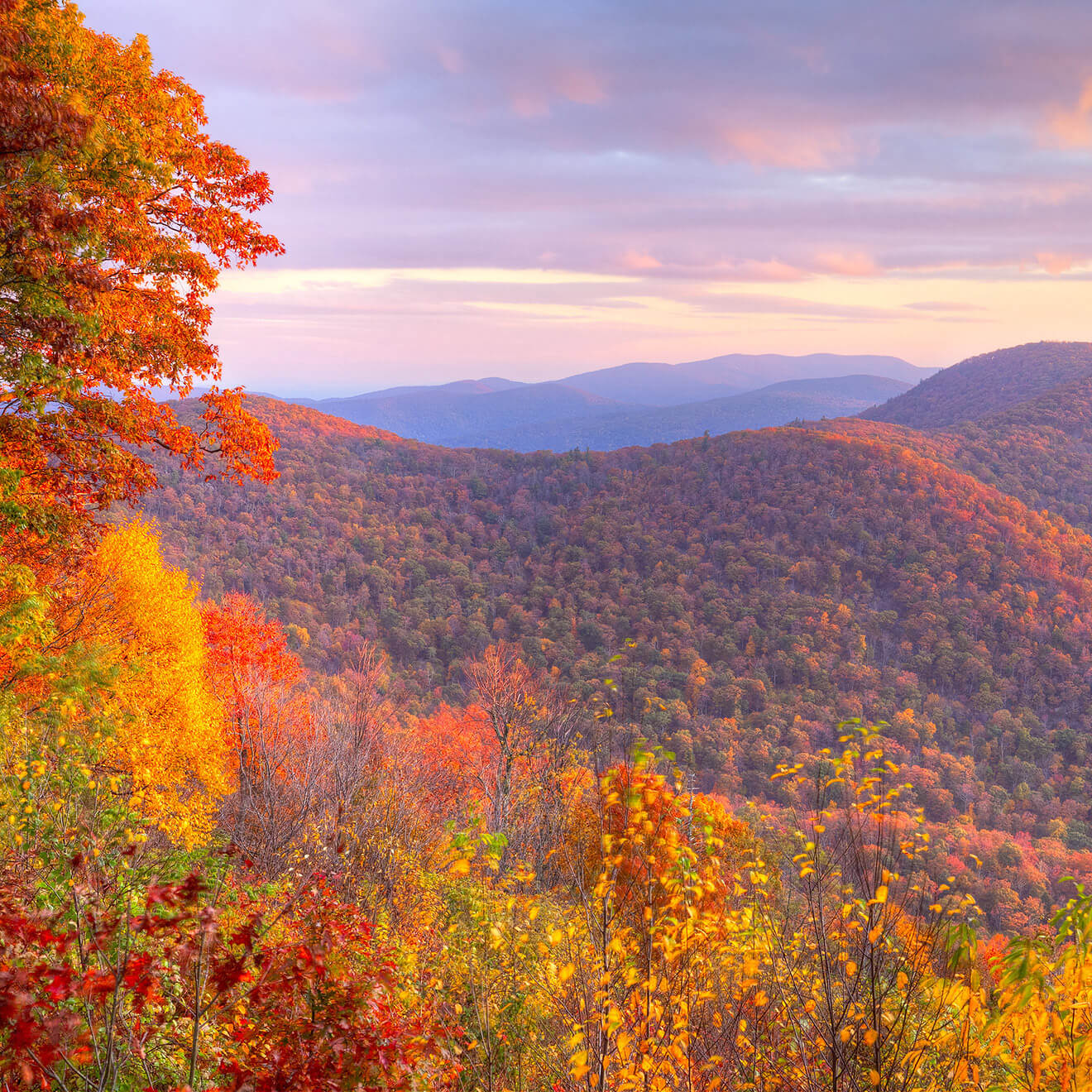 Top Things to do in Virginia - Shenandoah National Park
