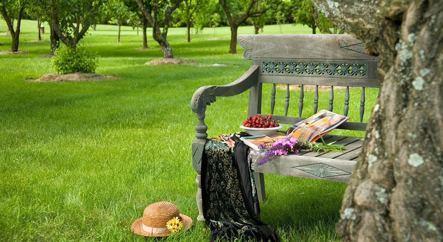Bench in our Orchard Garden at our Virginia bed and breakfast