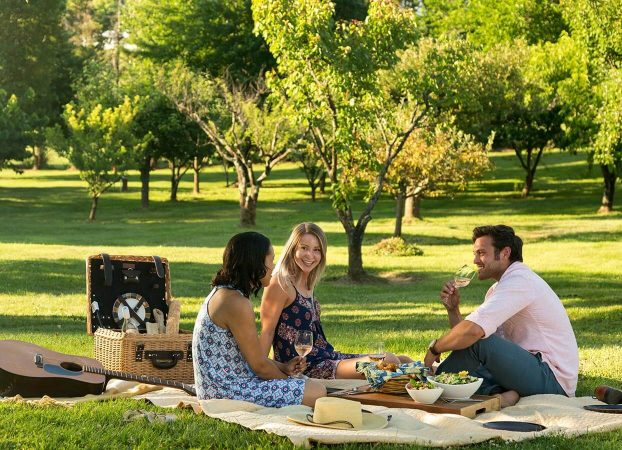 Things to do in Northern Virginia - Take a Picnic with Friends