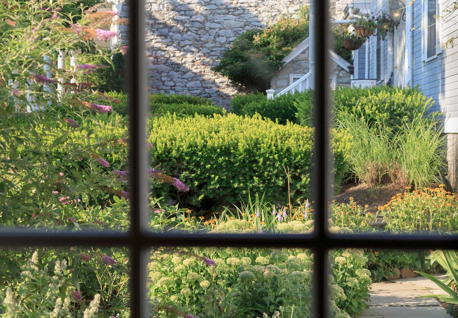 View of a garden out of a paned window