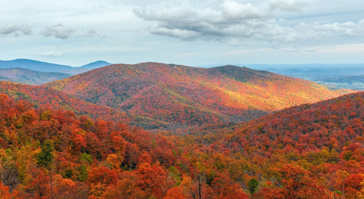 Shenandoah National Park in the Fall