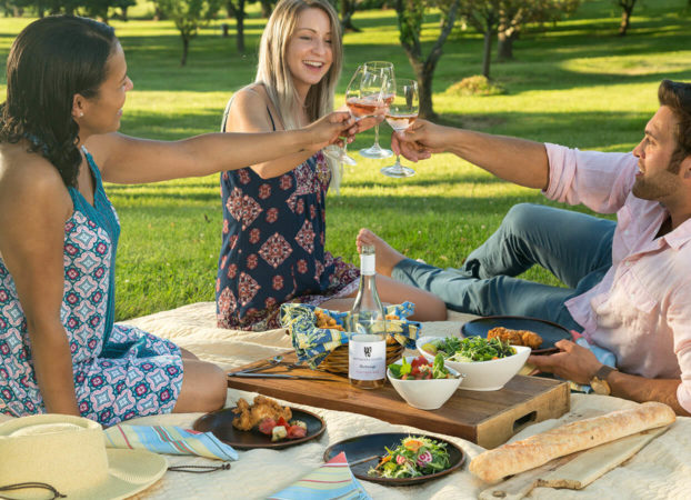 group of friends enjoying a picnic with wine