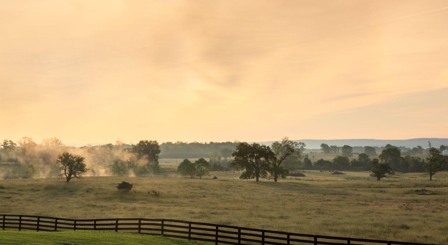 Fog Over the Valley Near Our Northern VA Inn