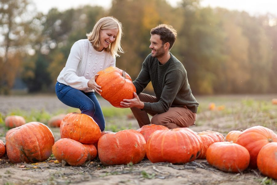 couple at a pumpkin patch on a fall getaway in Shenandoah Valley, VA
